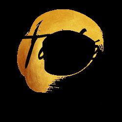 Taobé - client of Shapelab